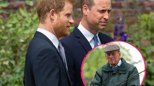 Neue Doku: Harry und William schwärmen von Prinz Philip (†)
