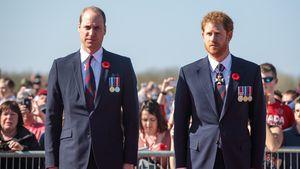 Übler Streit zwischen William und Harry wegen Meghans Cover