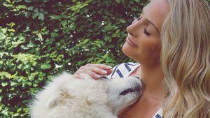 Rebecca Burger, Bloggerin