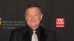 """""""Beschützer"""": """"Jumanji""""-Star schwärmt von Robin Williams (†)"""