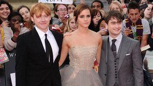 Die Schöne & das Biest: Dieser Star unterstützt Emma Watson