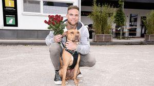 Überraschung! Bachelor Basti Preuss verteilt wieder Rosen