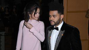 Für Justin? Selena Gomez bricht Kontakt zu The Weeknd ab!