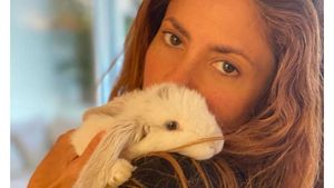 """Niedliches Fellknäuel"": Shakira ist jetzt Kaninchen-Mami"