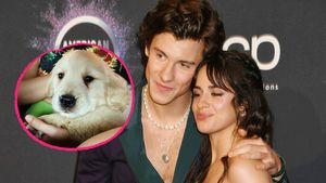 So süß ist Shawn Mendes und Camila Cabellos neuer Welpe!