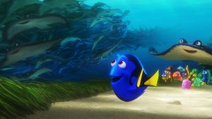 "Disney-Star ""Dorie"""