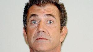 Keine schwedischen Gardinen für Mel Gibson