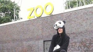 Cro im Zoo? Die Panda-Parodie von Y-TITTY