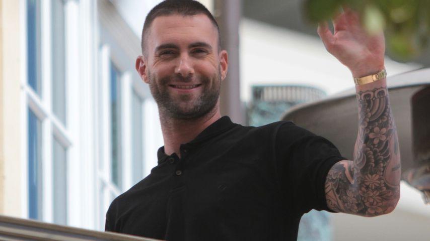 Adam Levine: Auch als Schauspieler erfolgreich?