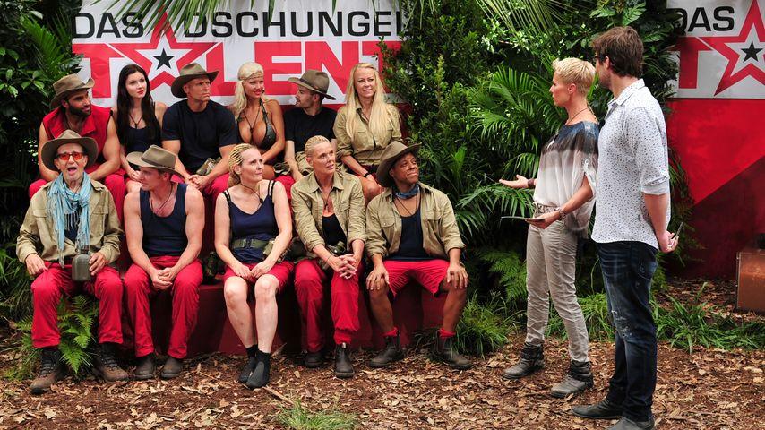 Dschungel-Erfolg:  7 Mio. Zuschauer sahen Davids Ausscheiden