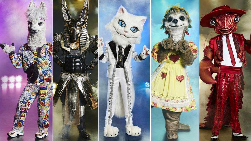 """Endlich komplett: Das sind alle """"The Masked Singer""""-Kostüme"""
