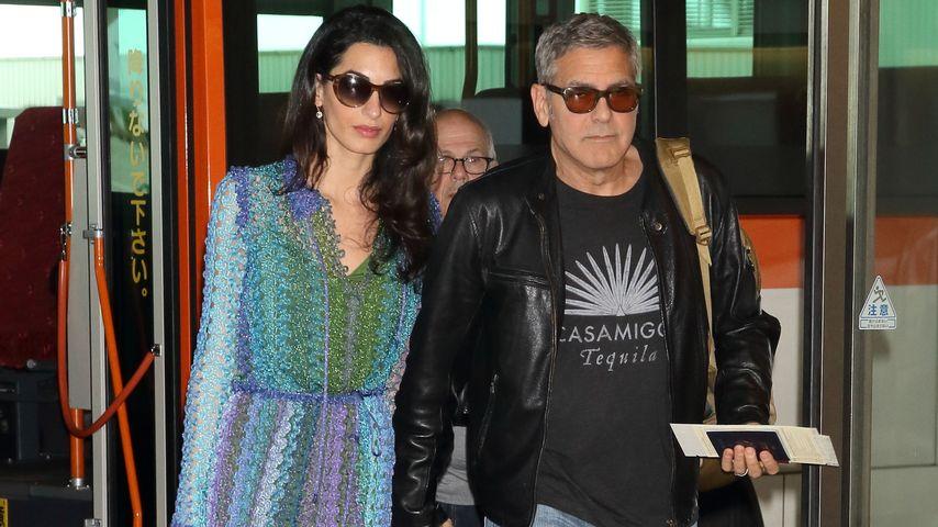 Verrücktes Gerücht: Ist Amal Clooney etwa schwanger?