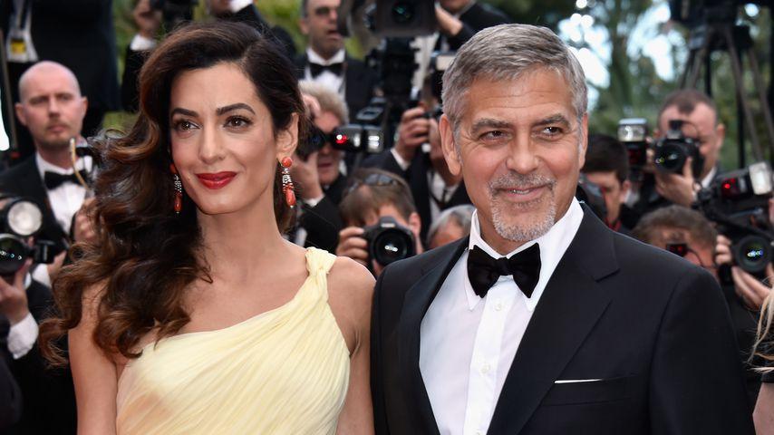 Amal und George Clooney bei einer Film-Premiere