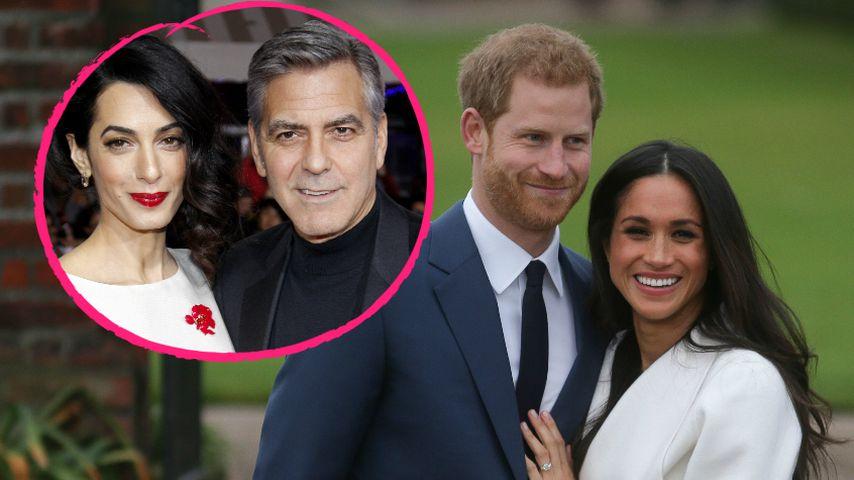Die Clooneys bei Royal-Hochzeit? Amals Friseur plaudert!