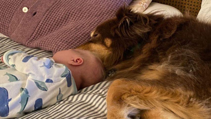 Das Baby von Amanda Seyfried