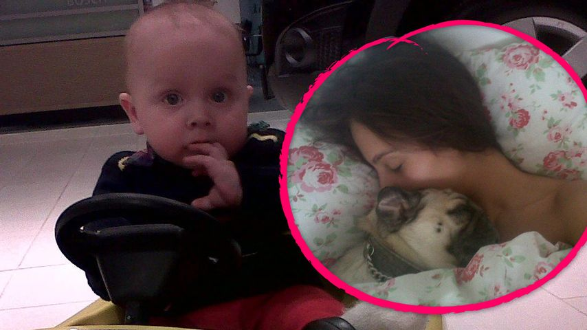 Anastasia: Das schenkt sie Baby Henry & Mops Gucci