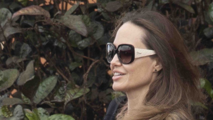 Angelina Jolie: Das frustriert sie nach Trennung von Brad