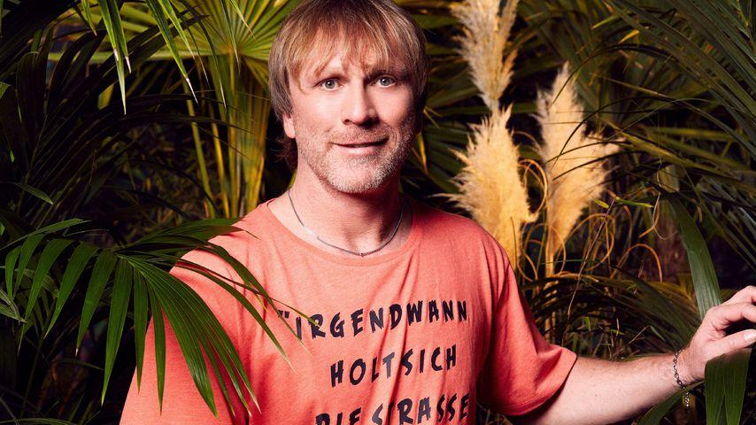 Ansgar Brinkmann, Dschungelcamp-Kandidat