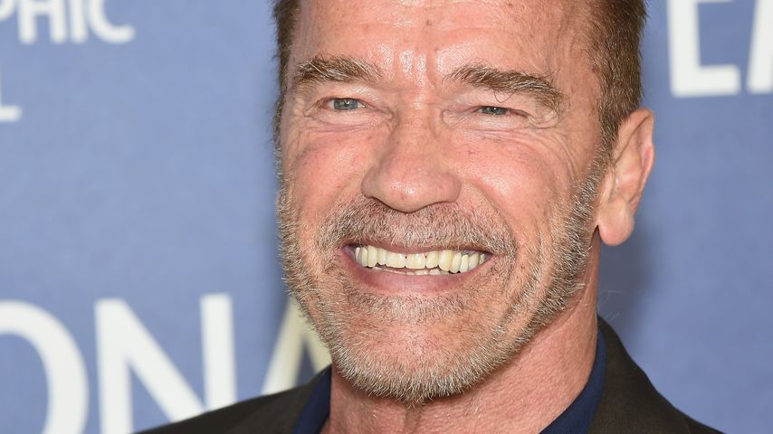 US-Präsident Arnold Schwarzenegger? Er wäre angetreten!