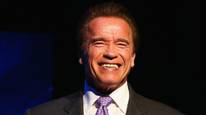 Arnold Schwarzenegger, ehemaliger Politiker