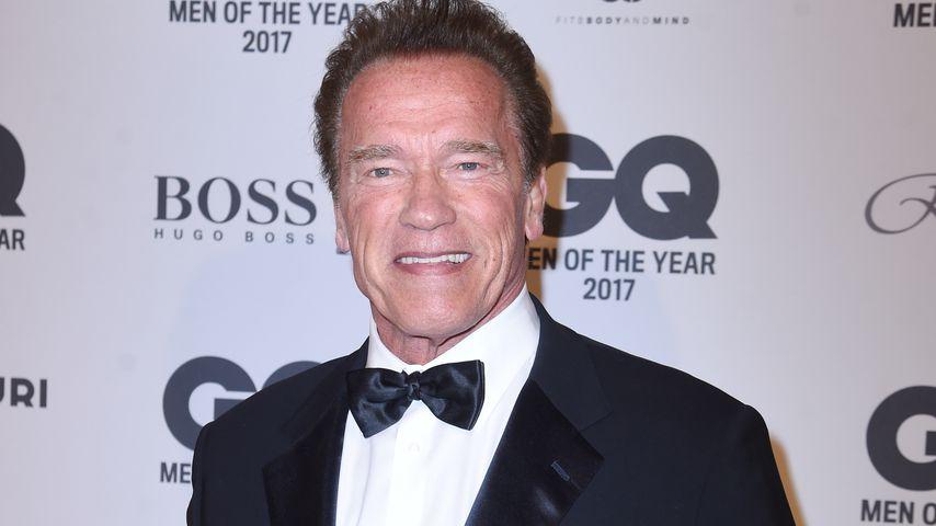 """Arnie ist """"Jahrhundertlegende"""": Das lieben die Promis an ihm"""