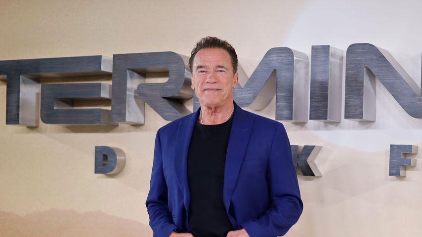 Arnold Schwarzenegger im Oktober 2019