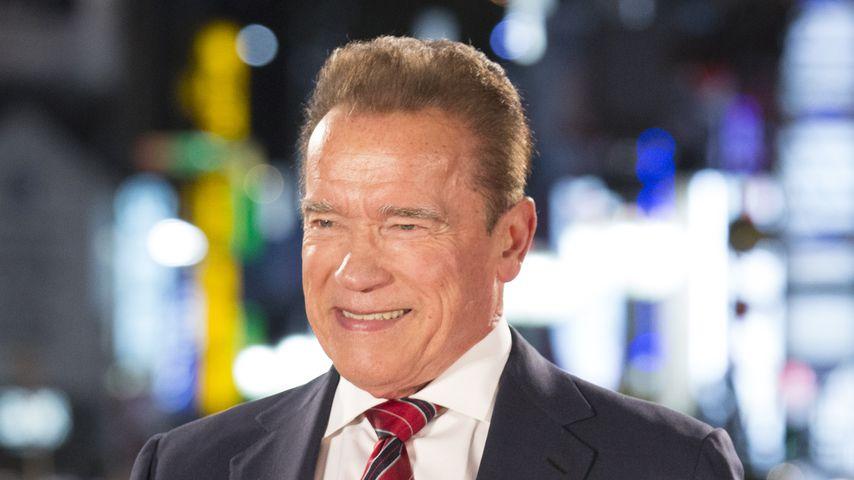 Arnold Schwarzenegger im November 2019