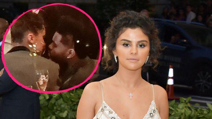 Bella & The Weeknd wieder ein Paar: Selena Gomez geschockt!
