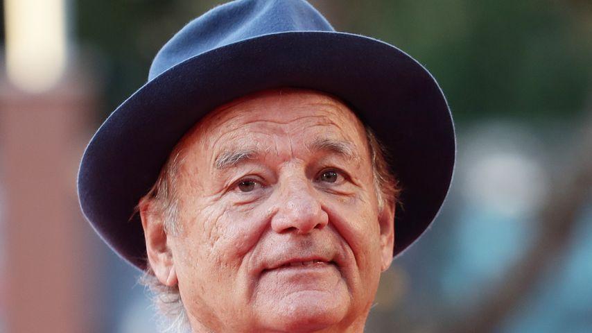Bill Murray, Schauspieler