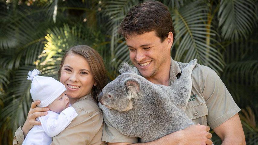 Bindi Irwin und Chandler Powell mit ihrer Tochter Grace Warrior und einem Koala