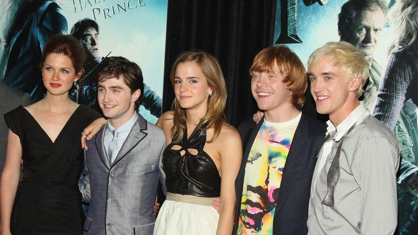 Bonnie Wright, Daniel Radcliffe, Emma Watson, Rupert Grint und Tom Felton
