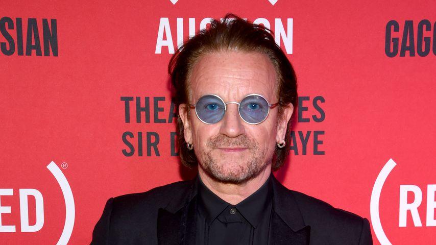 Musiker Bono