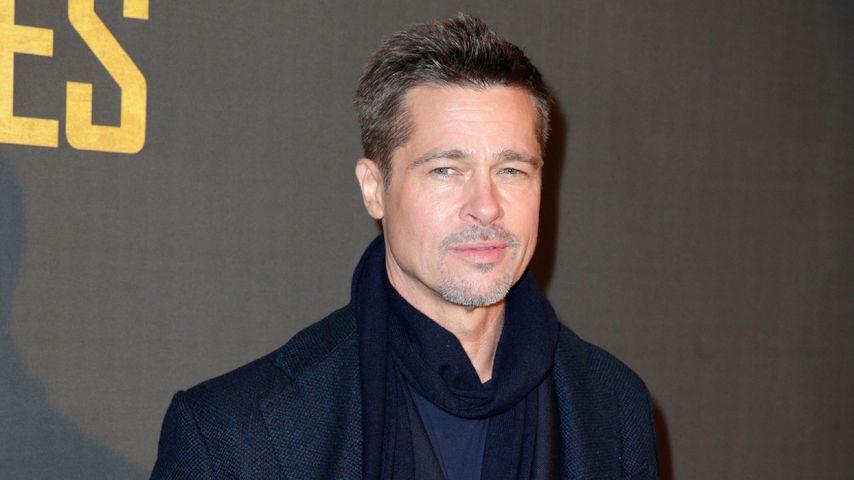 """Brad Pitt bei der """"Allied""""-Premiere in Paris"""