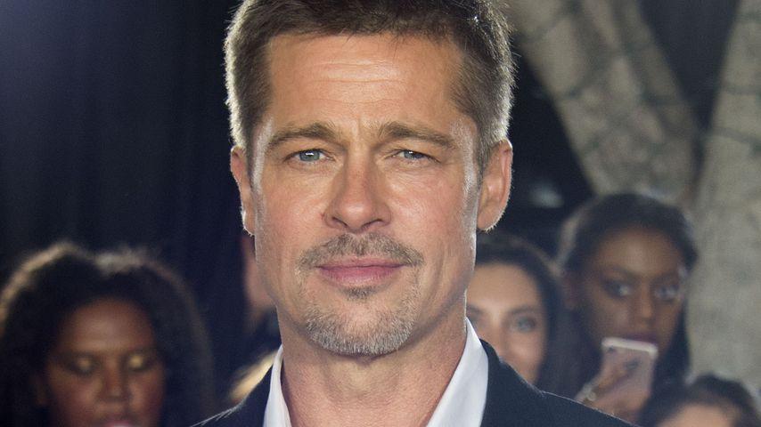 """Brad Pitt bei einem """"Allied""""-Event in Westwood"""