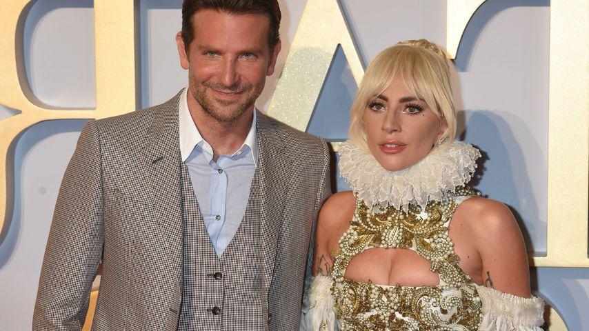 Kein Regie-Oscar für Bradley Cooper: Lady Gaga enttäuscht!