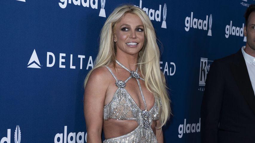 """""""Geisteszustand wie Komapatientin"""": Anwältin über Britney"""