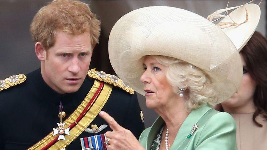 Prinz Harrys Memoiren: Muss vor allem Camilla zittern?