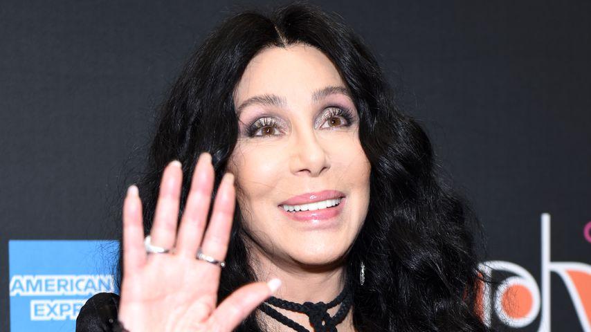 35 Jahre in Gefangenschaft: Cher befreit Elefanten aus Zoo