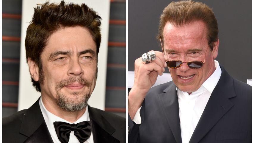 """Predator"": Oscar-Star soll Arnold Schwarzenegger beerben"