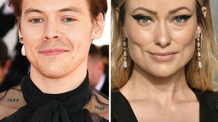 """Ernst: Harry Styles """"traf schon mehrmals"""" Olivia Wildes Kids"""
