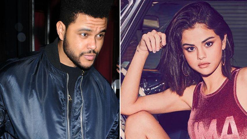 Schlag gegen The Weeknd-Songs? Sel Gomez rockt im Auto ab