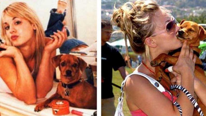 Trauriges Jahresende: Kaley Cuocos Hund Petey ist gestorben