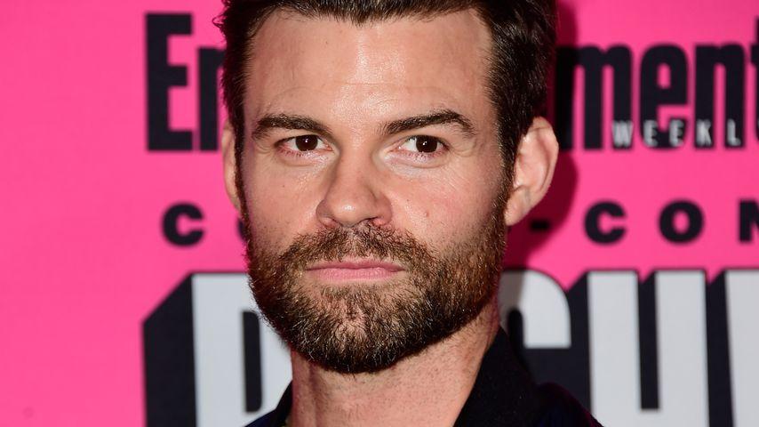 Daniel Gillies, Schauspieler