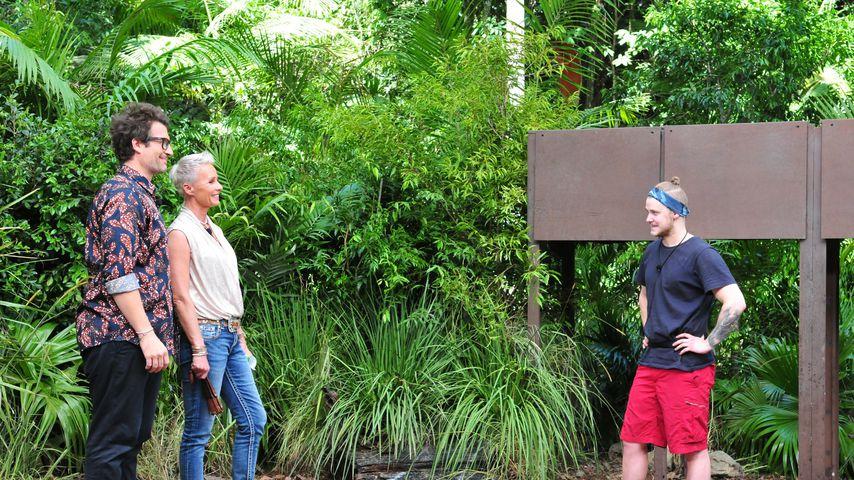 Daniel Hartwich, Sonja Zietlow und Felix van Deventer an Tag 16 im Dschungelcamp