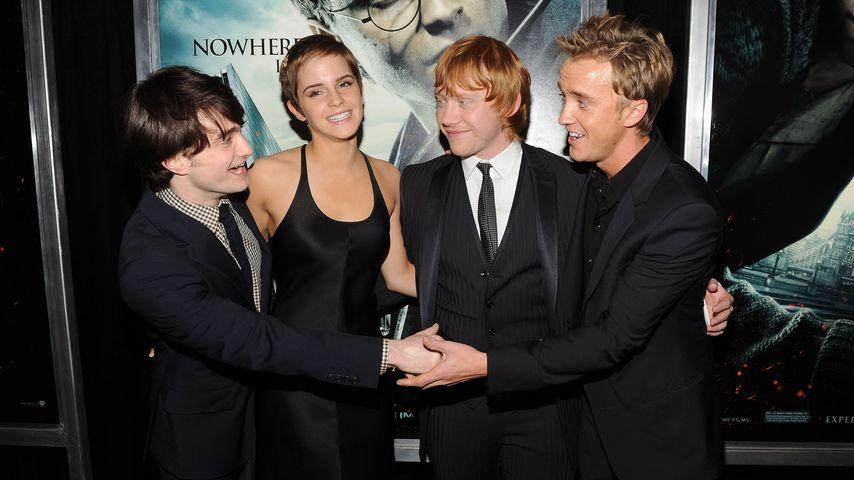 Daniel Radcliffe, Emma Watson, Rupert Grint und Tom Felton, November 2010
