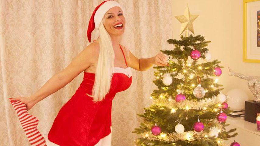 Wer Schmückt Den Weihnachtsbaum.Santa Baby So Sexy Schmückt Die Katze Ihren Weihnachtsbaum