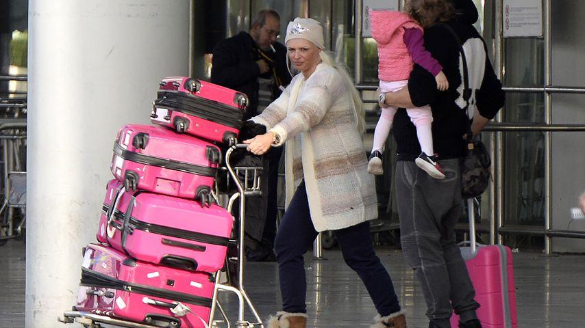 Pinke Kofferflut: Neuer Shitstorm – für Reise-Stil der Katze