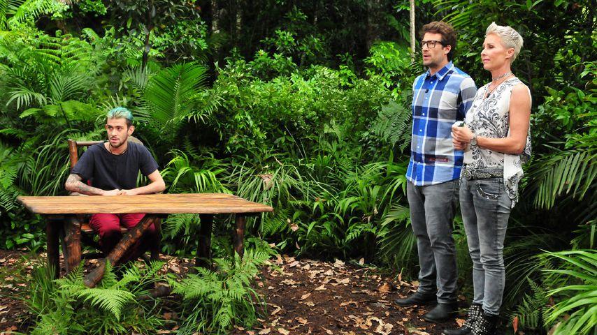 Daniele Negroni, Daniel Hartwich und Sonja Zietlow bei der finalen Dschungelprüfung