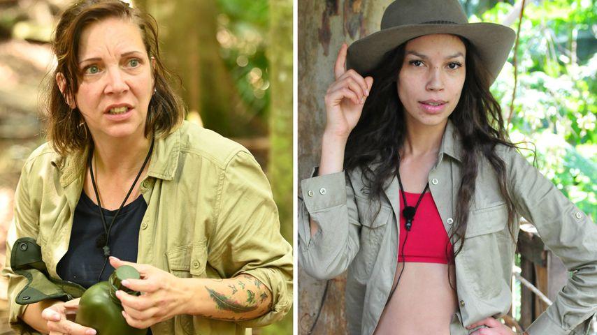 Kann Danni ihr Dschungel-Image noch retten? Das sagt Gisele!