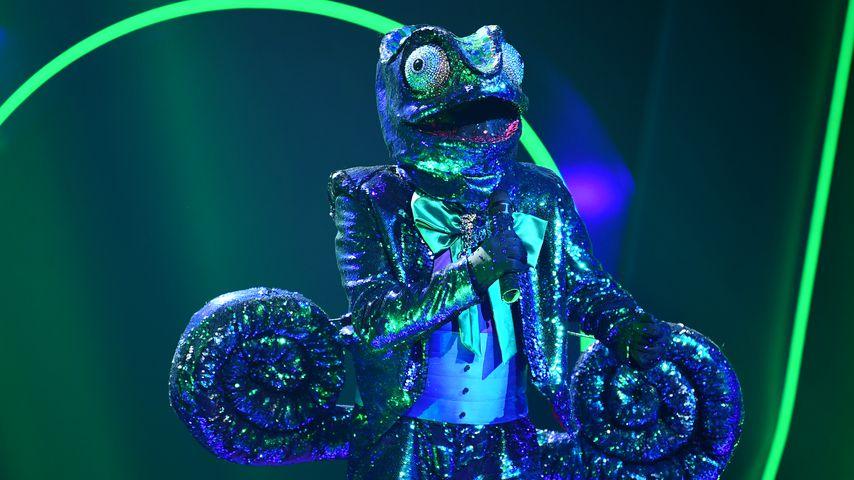 """Das """"The Masked Singer""""-Chamäleon"""